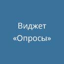 Виджет «Опросы» ВКонтакте