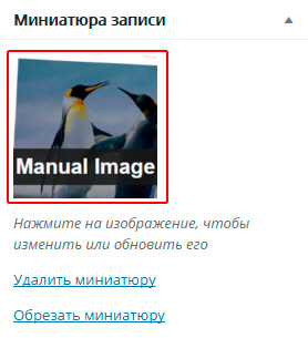 Работа с плагином Manual Image Crop