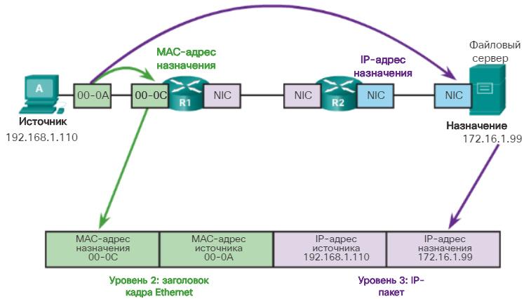 MAC и IP. Устройство назначения в удаленной сети. CCNA Routing and Switching.