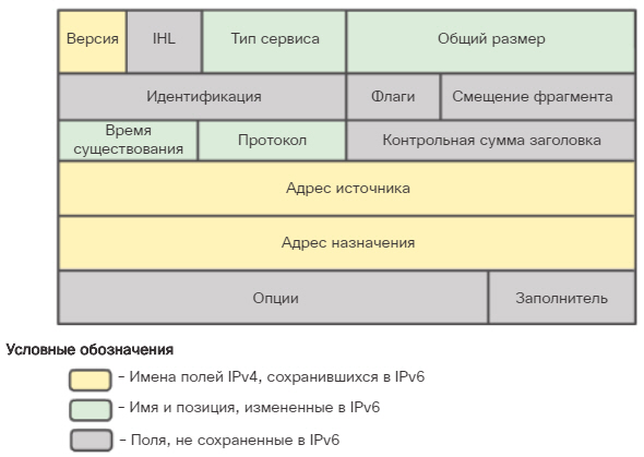 Пакет IPv6. Инкапсуляция IPv6. CCNA Routing and Switching.