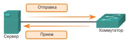 Полнодуплексная передача данных. CCNA Routing and Switching.