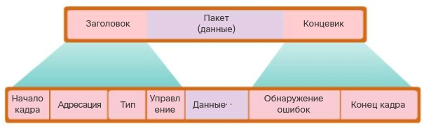 Поля кадра. CCNA Routing and Switching.