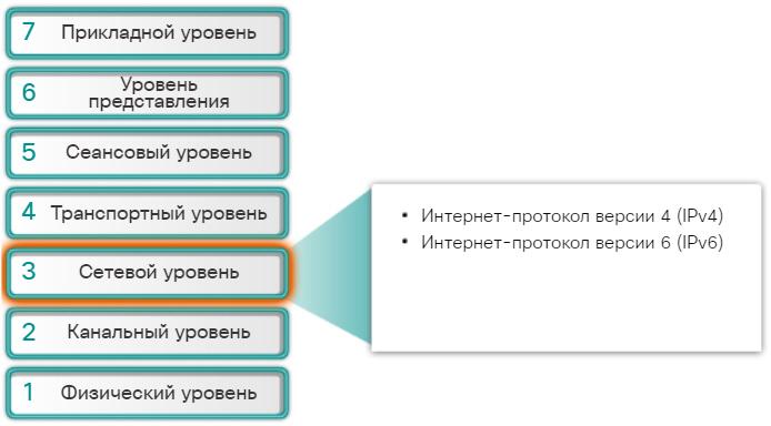 Протоколы сетевого уровня. CCNA Routing and Switching.