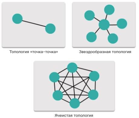 Распространенные физические топологии глобальных сетей. CCNA Routing and Switching.
