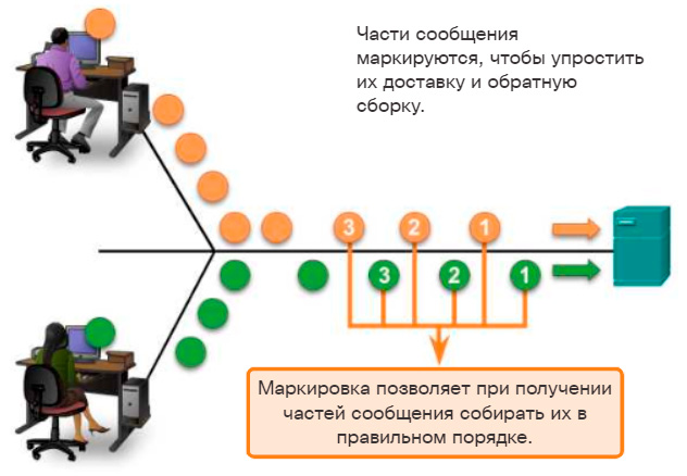 Сегментация сообщения. CCNA Routing and Switching.