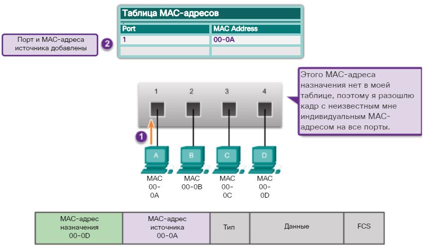 Таблица MAC-адресов. Получение информации о MAC-адресах. CCNA Routing and Switching.