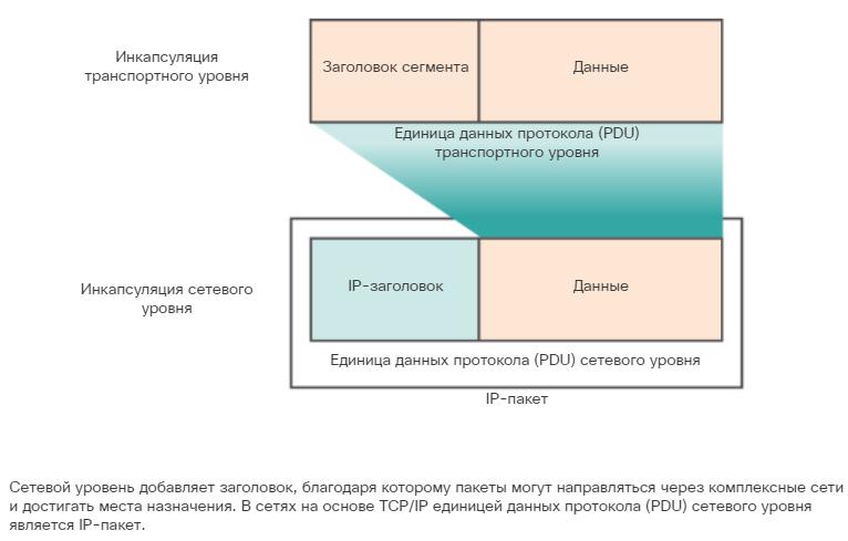 Характеристики протокола IP. Инкапсуляция протокола IP. CCNA Routing and Switching.