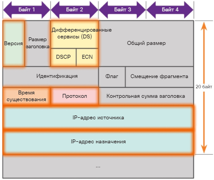 Заголовок пакета IPv4. CCNA Routing and Switching.