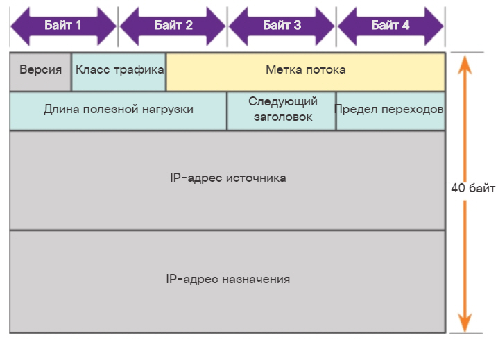 Заголовок пакета IPv6. CCNA Routing and Switching.