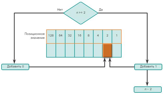 Сетевые IPv4-адреса. Преобразование десятичных чисел в двоичный формат. CCNA Routing and Switching.