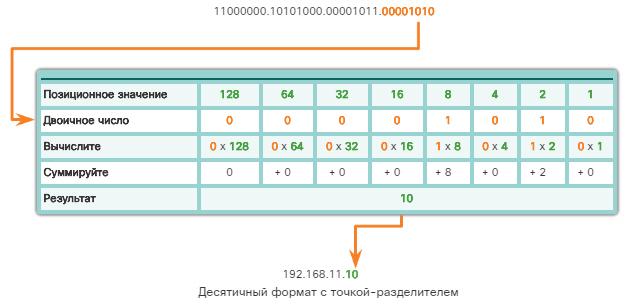 Сетевые IPv4-адреса. Преобразование двоичных чисел в десятичный формат. CCNA Routing and Switching.