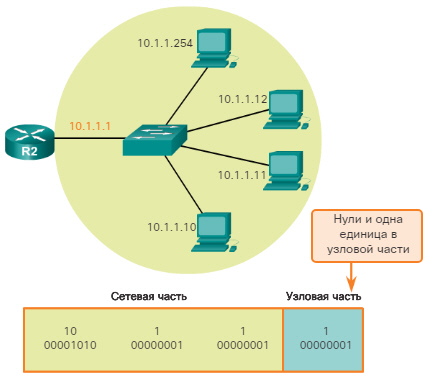 Сетевые IPv4-адреса. Сетевой адрес, адрес узла и широковещательный адрес. CCNA Routing and Switching.