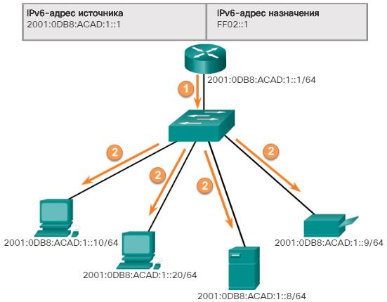 Сетевые IPv6-адреса. Присвоенные групповые IPv6-адреса. CCNA Routing and Switching.
