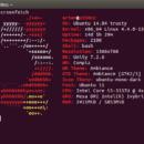 Вывод информации в терминале при помощи Screenfetch