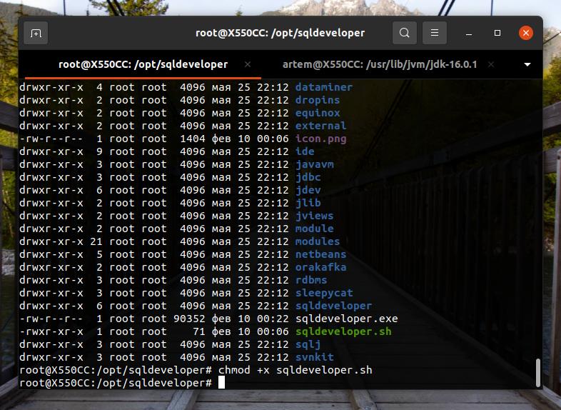 Делаем файл sqldeveloper.sh исполняемым