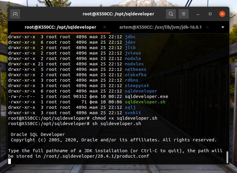 Запускаем файл sqldeveloper.sh