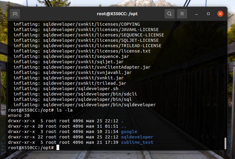 SQL Developer успешно распакован